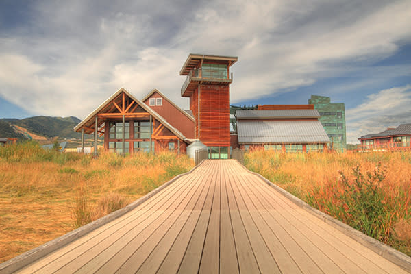 Spend a Day at the Swaner Preserve and EcoCenter